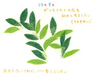091008.jpg